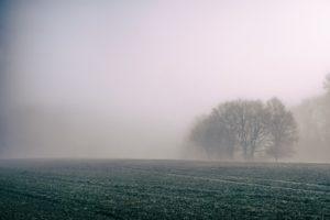 fog-828779_960_720
